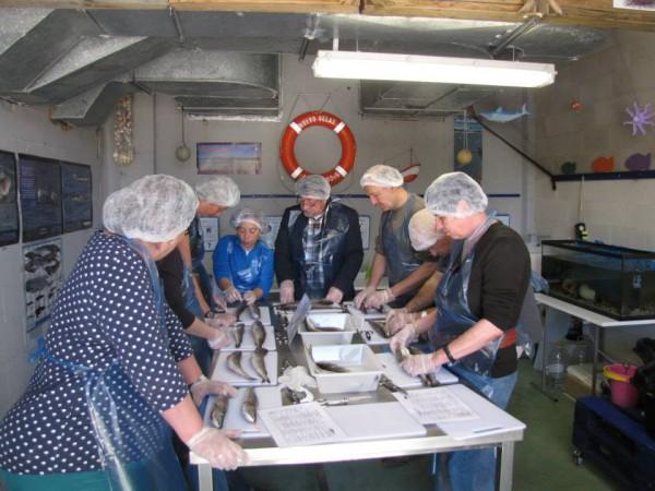 Taller de reconocimiento de pescado fresco 3