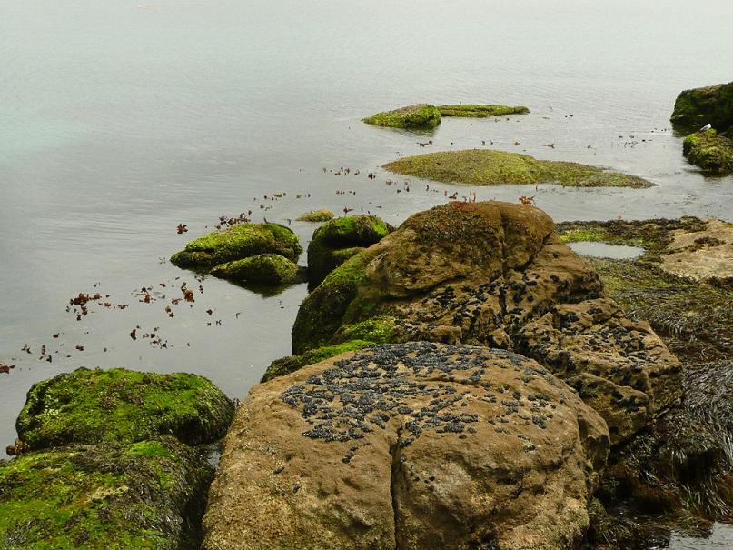 Piedras en Muxía-Foto de Mavi Villatoro