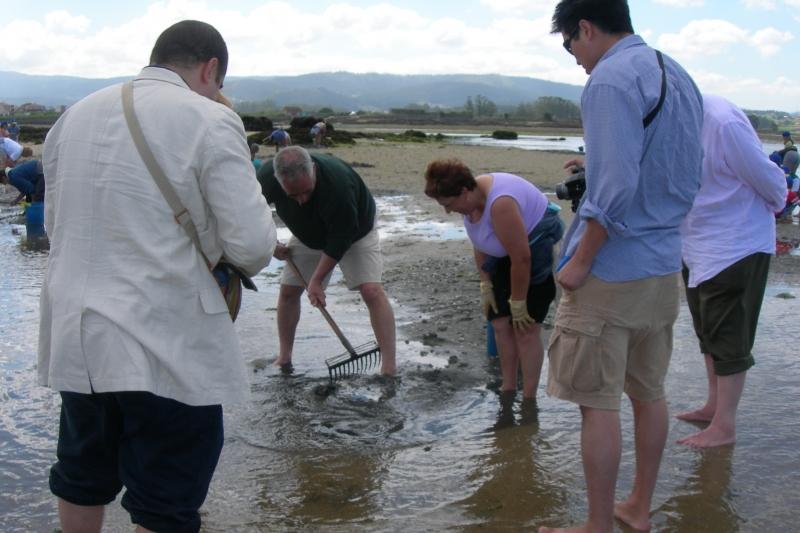 taller de marisqueo en Cambados