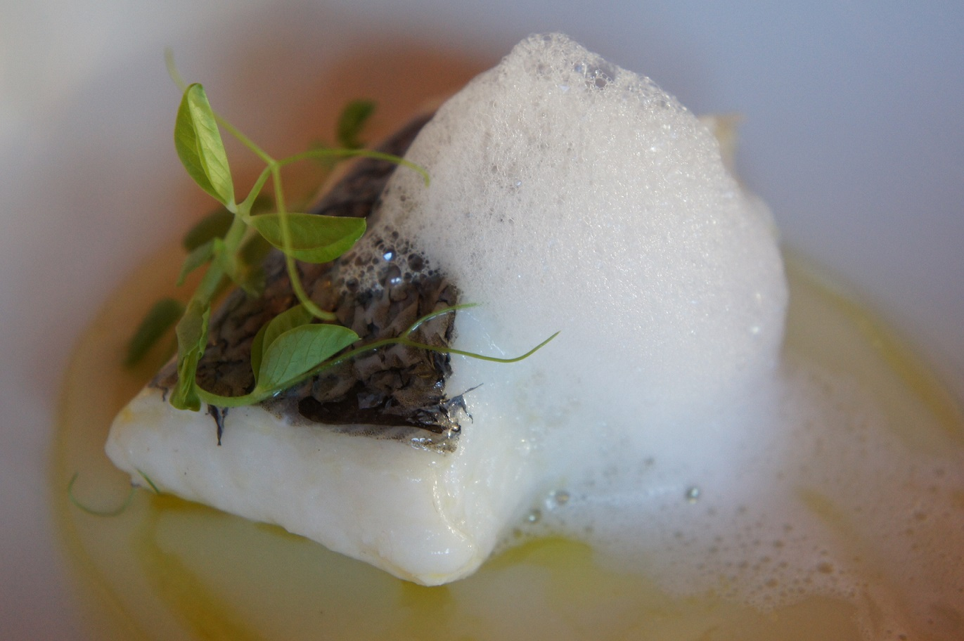 Fiestas gastronómicas de julio Merluza de pincho de Celeiro