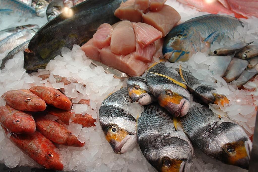 pescado-crudo