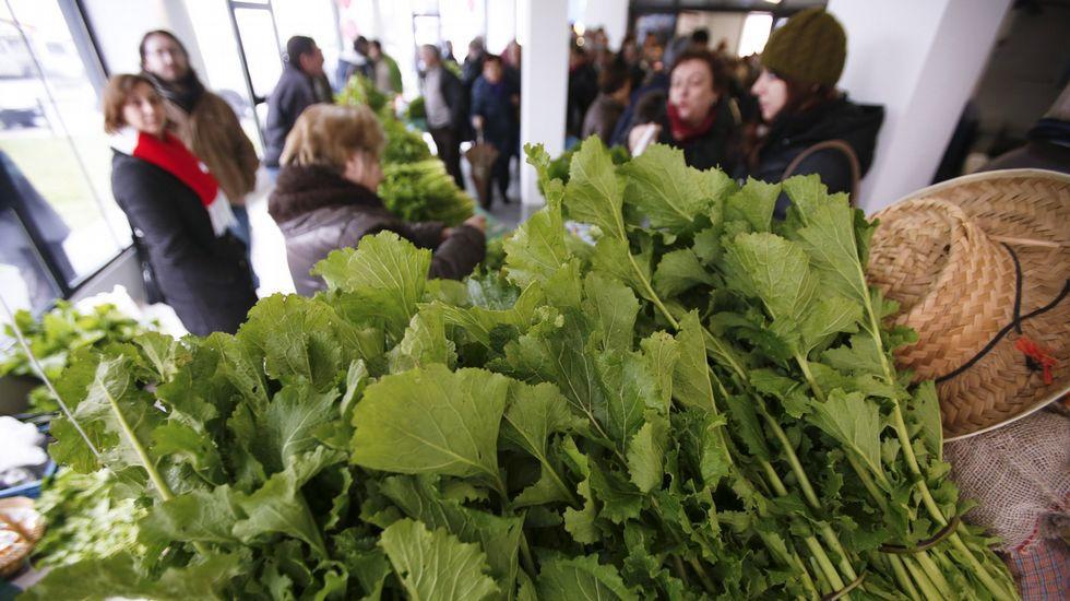 Feira do grelo As Pontes. Fiestas gastronomicas de febrero en galicia