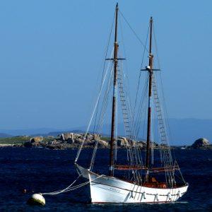 Cata a en barco ría de Arousa