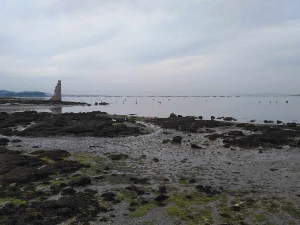 visitar Cambados o sarrido mariscadoras