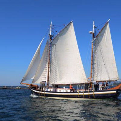 encontro embarcaciones tradicionales evangelina