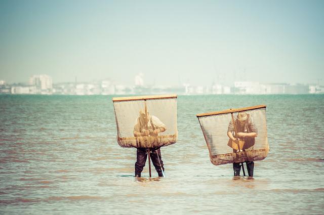 Marisqueo en Francia - Fuente Flickr - Julien Fourniol