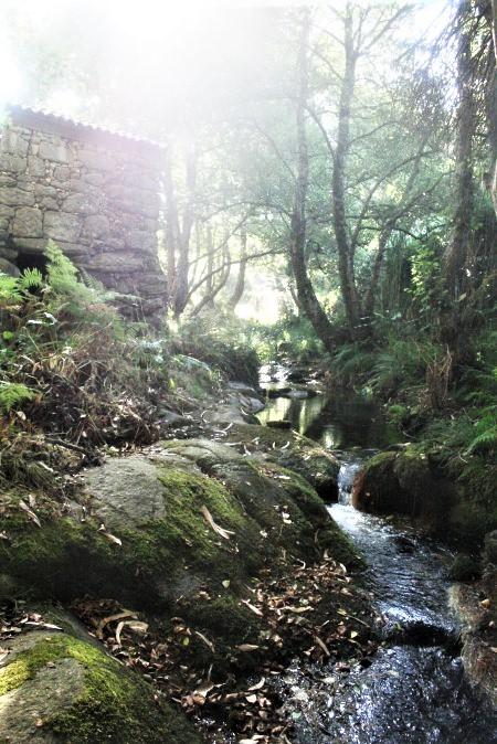 Visitar Baiona ruta