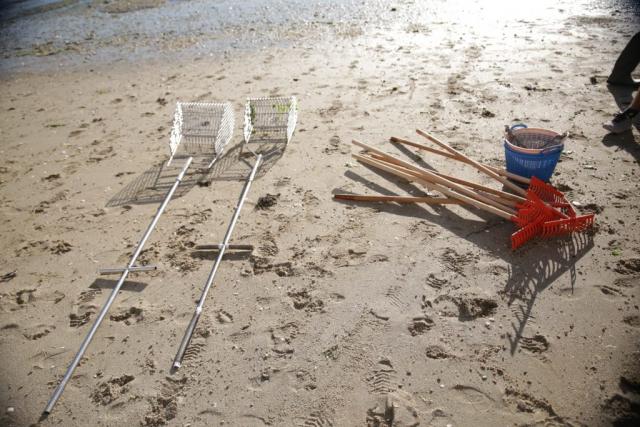 herramientas marisqueo amarcarril
