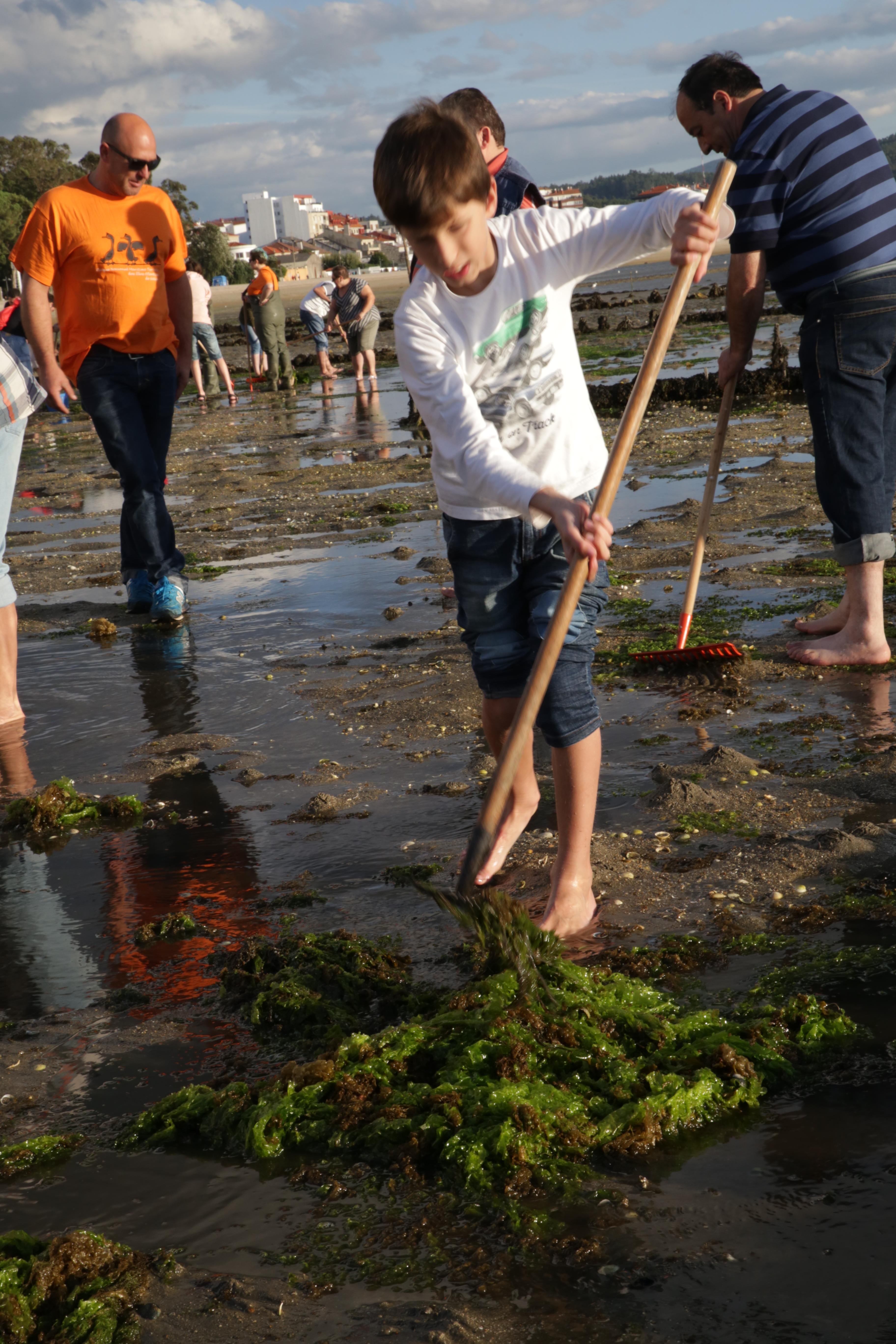 marisqueo amarcarril limpiando algas