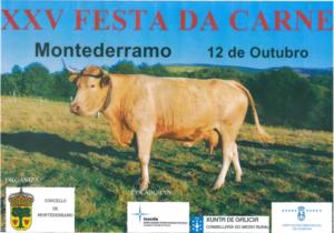 XXV Festa da Carne de Montederramo