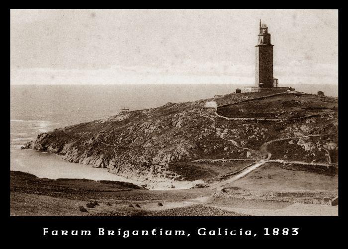 Isla Ballena 1