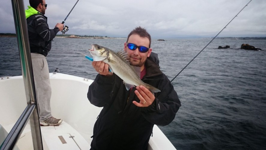 pesca lubina spinning