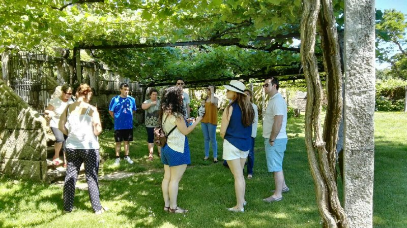 visita a viñedos