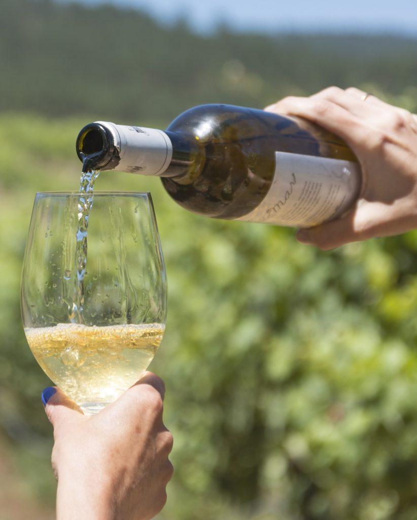 cata de vino en O Rosal