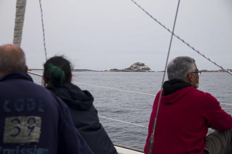 ruta en barco ría de arousa