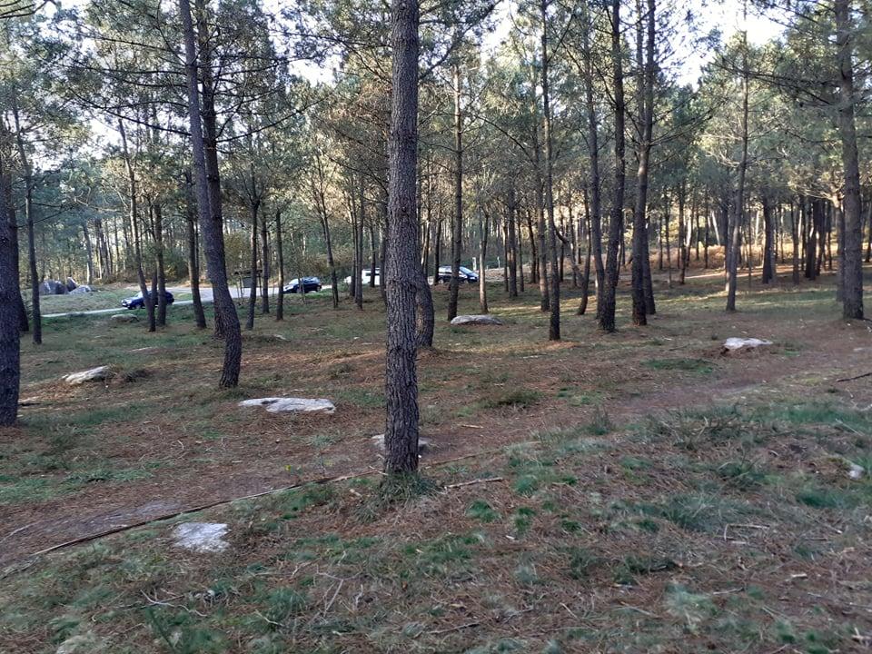 Zona de enterramentos tumulares