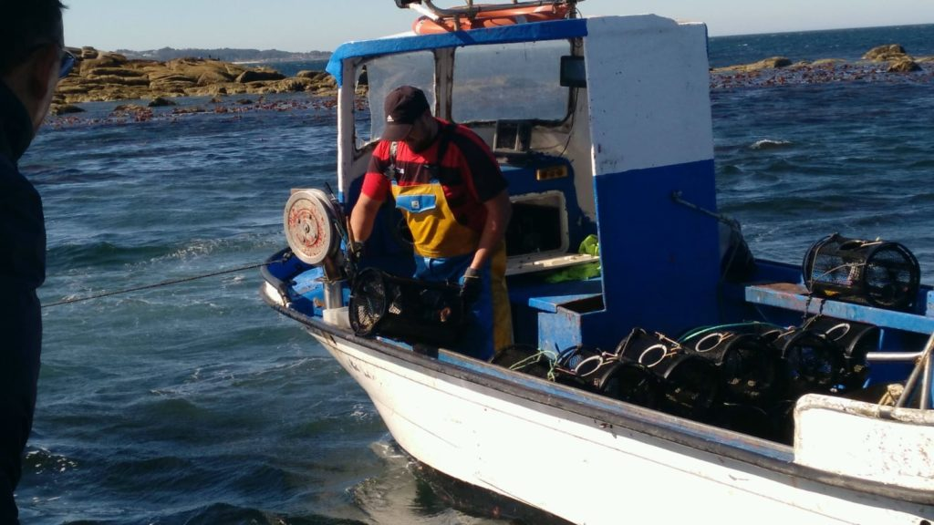 Pesca de pulpo con nasa