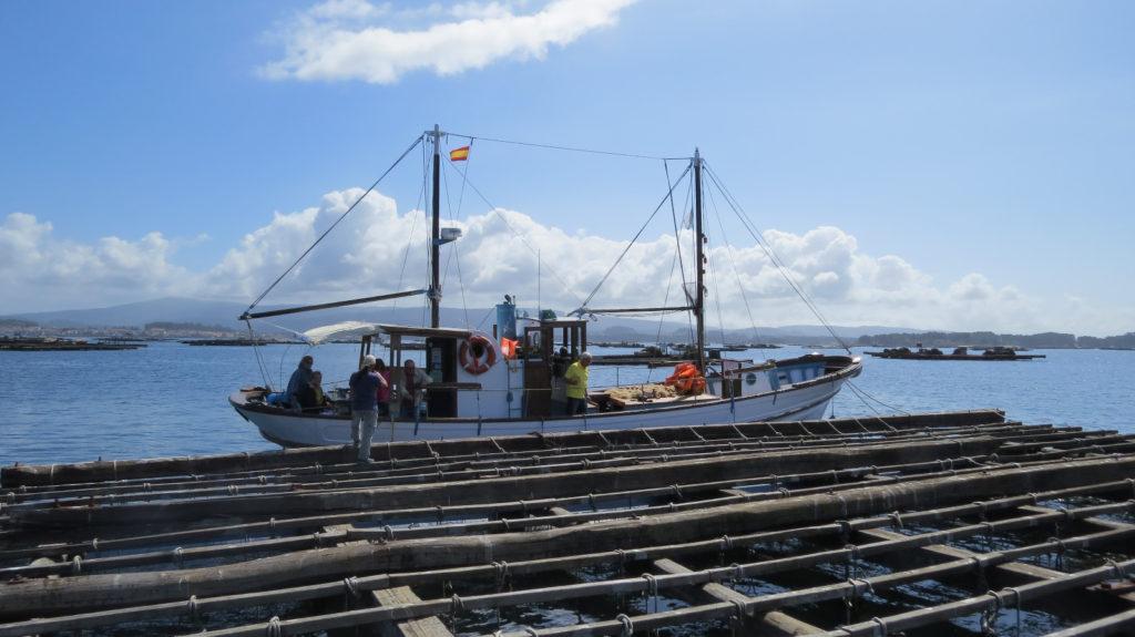 barco tradicional cultivo de mejillón