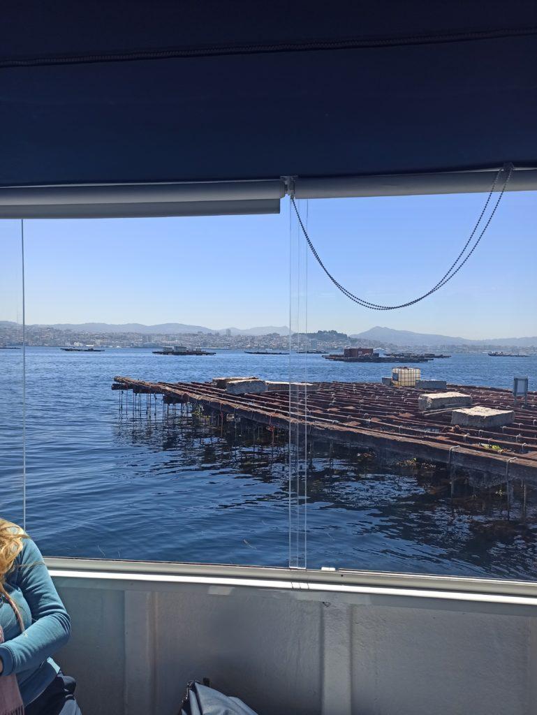paseo en barco para ver las bateas en la ría de Vigo